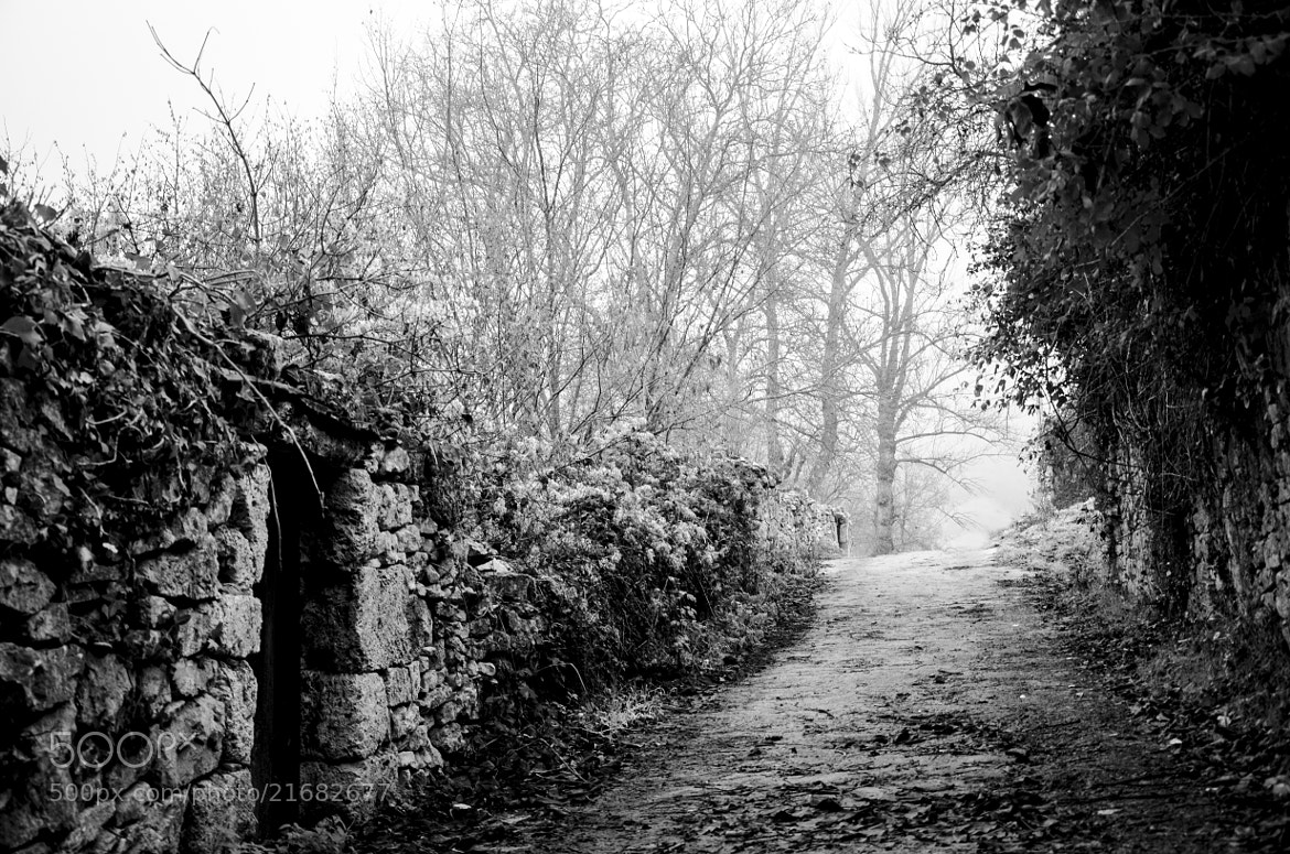 Photograph villaescusa (Cantabria) by Miguel Bustos on 500px