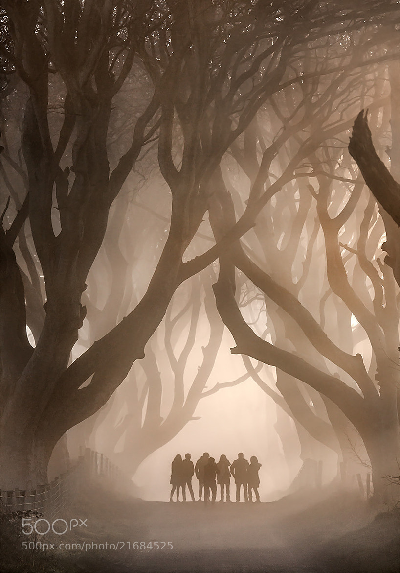 Photograph Shadow People by Stephen Emerson on 500px