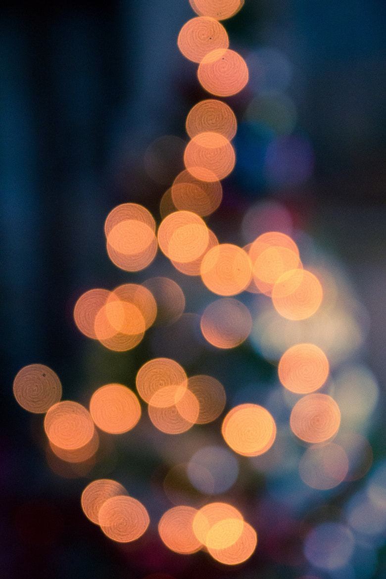 Photograph Merry Christmas by Salvatore Grigoli on 500px