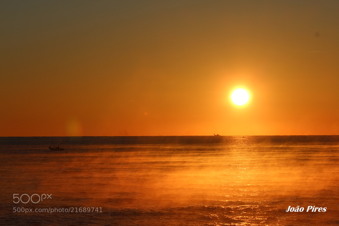 Photograph Sunrise by João Pires on 500px