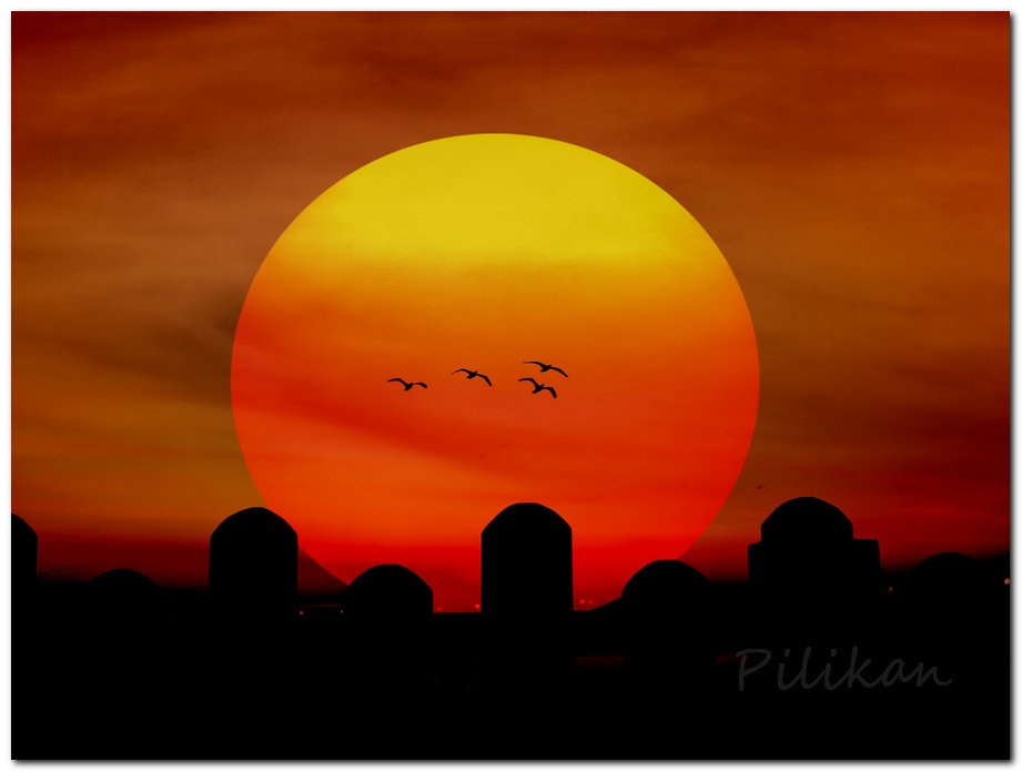 Photograph The sun by Pilikan Ch on 500px