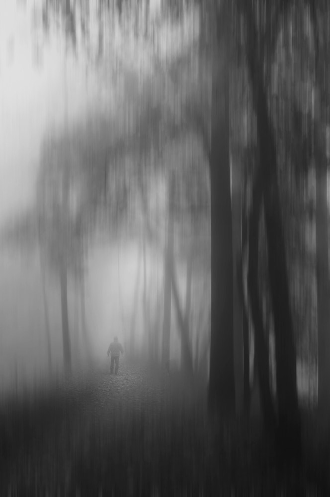 Photograph Vanishing in the fog by Magdalena Narloch on 500px