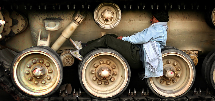 Photograph sleeping in a comfy tank by Rami  on 500px
