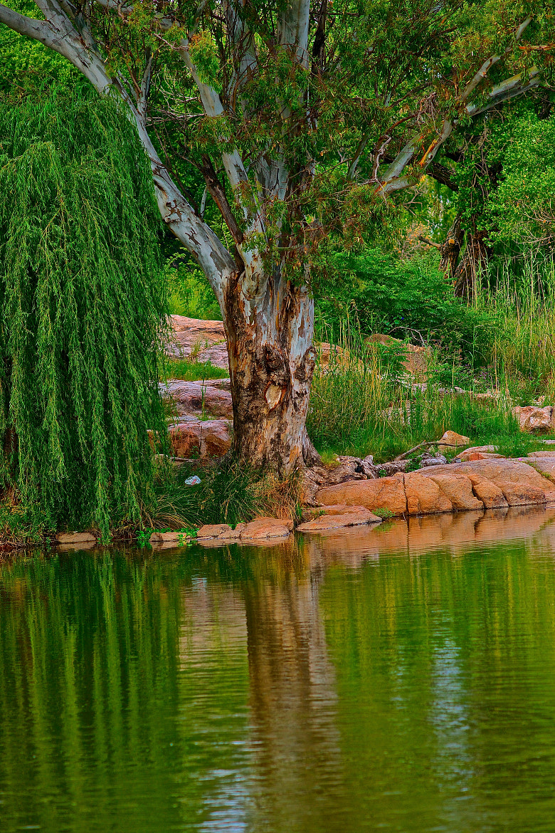 Photograph vaal river by Danny du Plessis on 500px