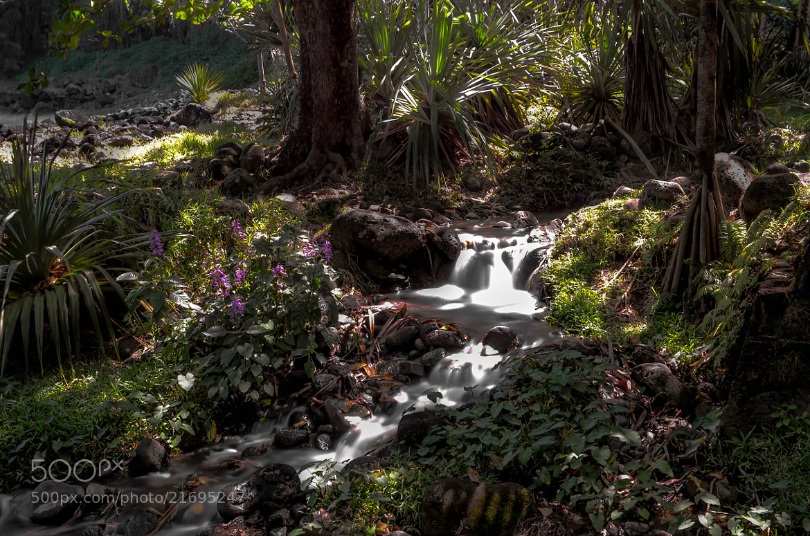 Photograph Little Waterfall by Nicolas Robert on 500px