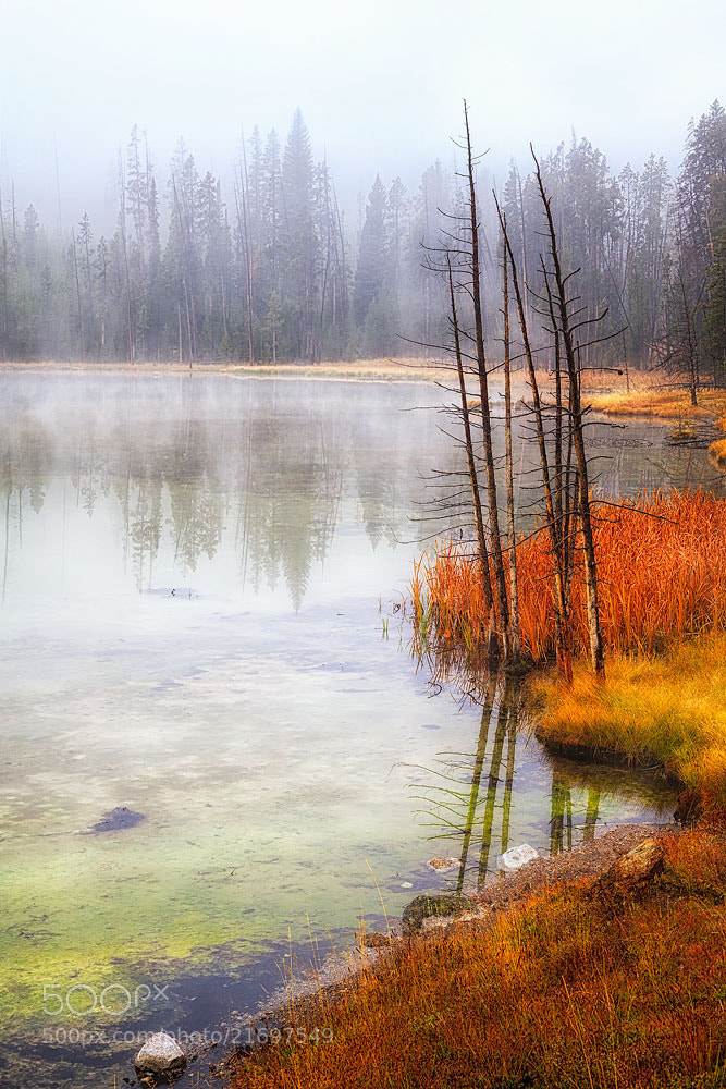 Photograph Yellowstone National Park by Ivan Peña on 500px