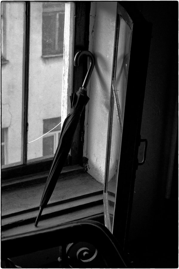 """Life on my windowsill"" (Evening of a rainy day), автор — Key GROSS (Konstantin Smirnov) на 500px.com"