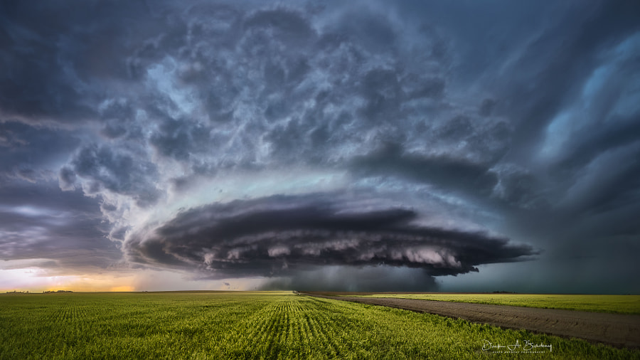 I've Looked At Clouds That Way de Derek Burdeny sur 500px.com