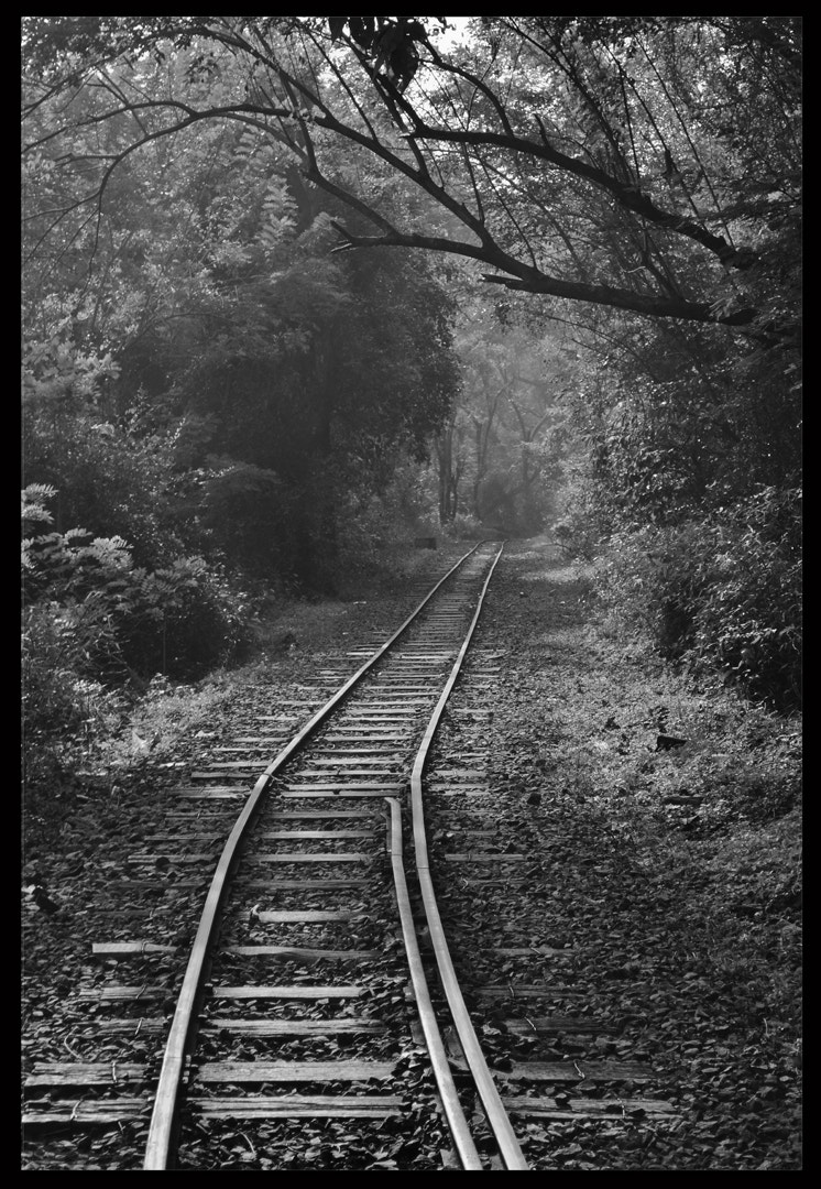 Photograph Untitled by yogesh waikul on 500px