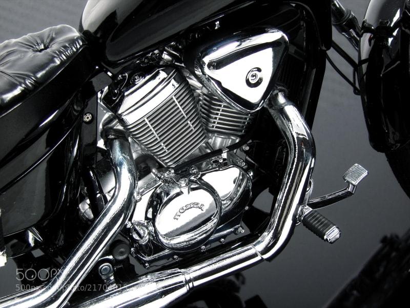 The model of Honda Steed 600 Scale: 1/12 aoshima/vmmodels Hand made
