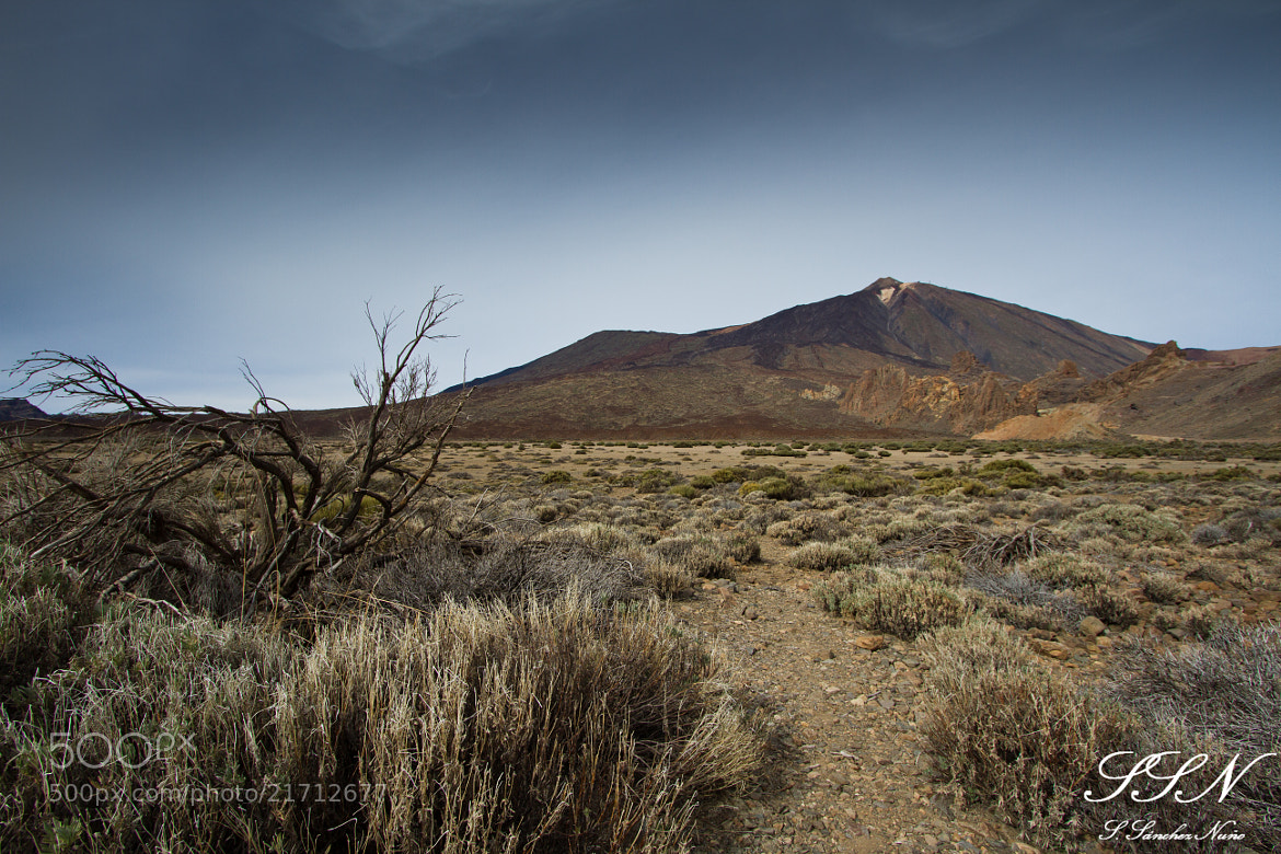 Photograph Parque natural del Teide by Sergio Sánchez Nuño on 500px