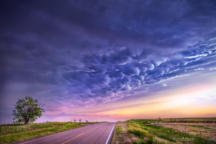 landscape photo Country Road, Take Me Home by landscape photographer Derek Burdeny on 500px.com