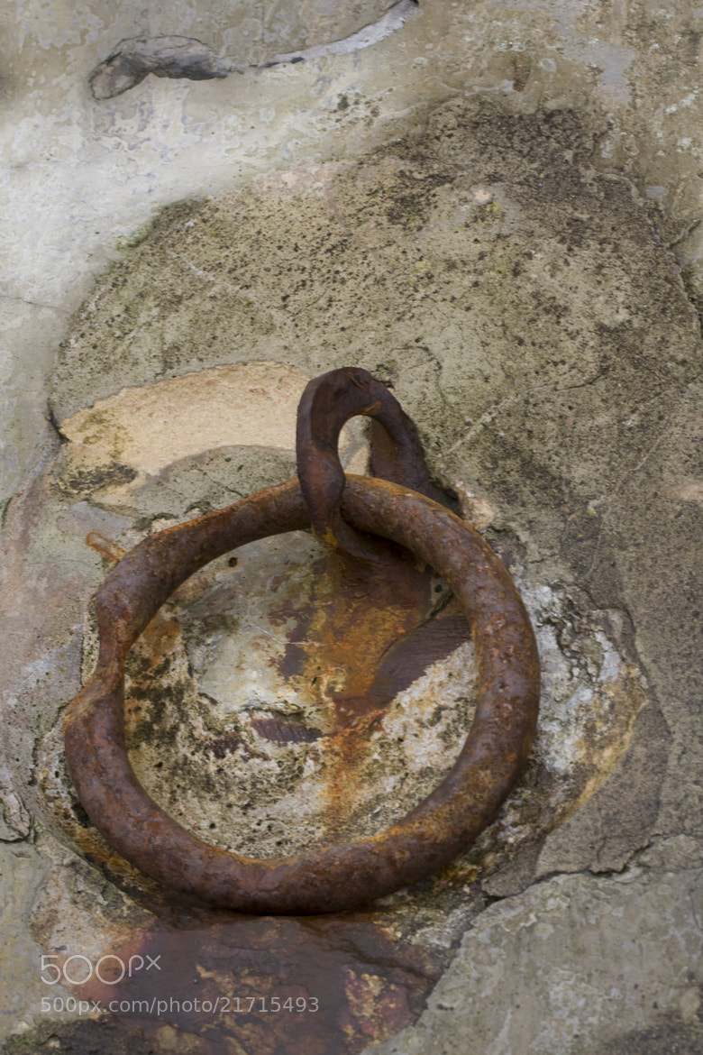 Photograph Rusty Ring by Mark Elsworth on 500px
