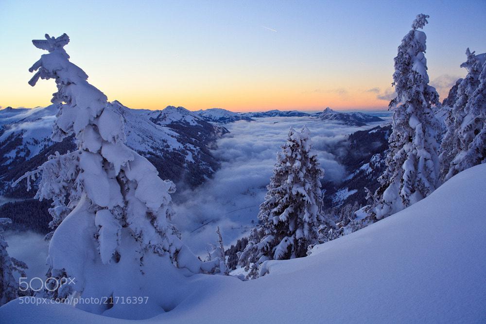 Photograph Fog in  the valley by Stefan Gerzoskovitz on 500px