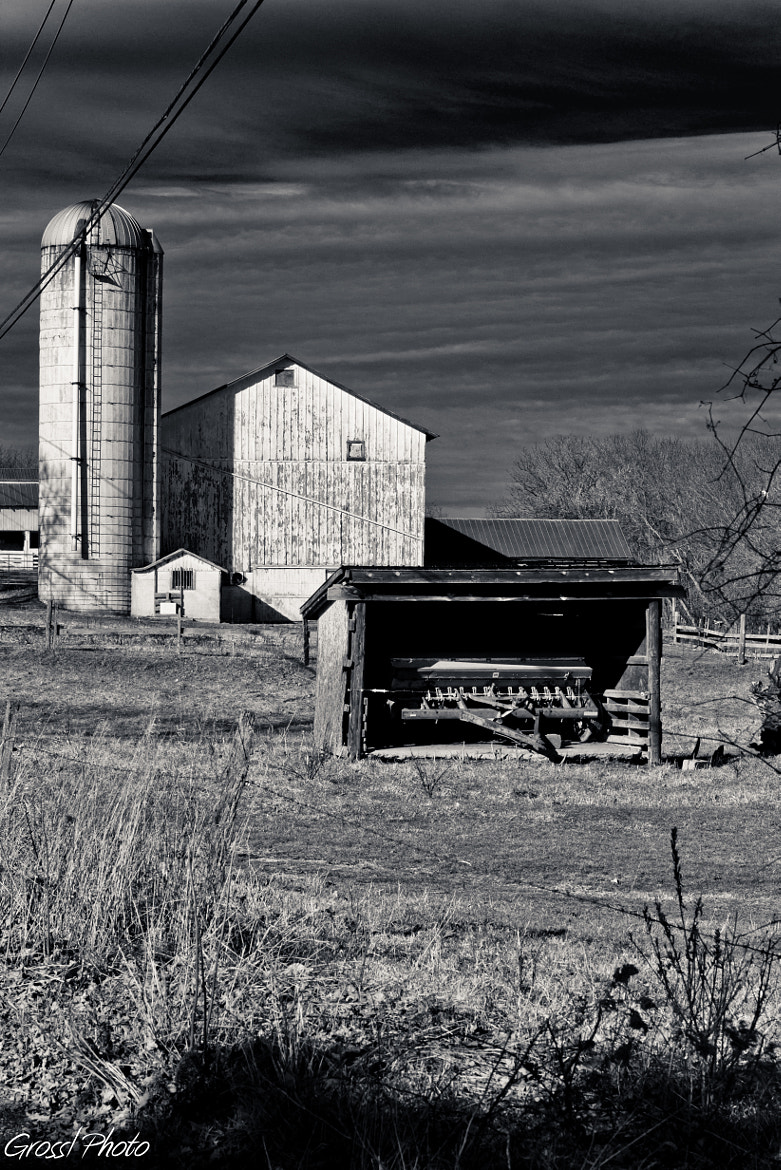 Photograph To Farm or not to Farm by John Gross on 500px