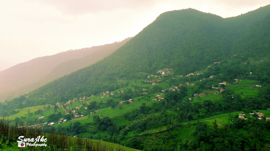 rural area and Green Grass by Suraj Katwal on 500px.com