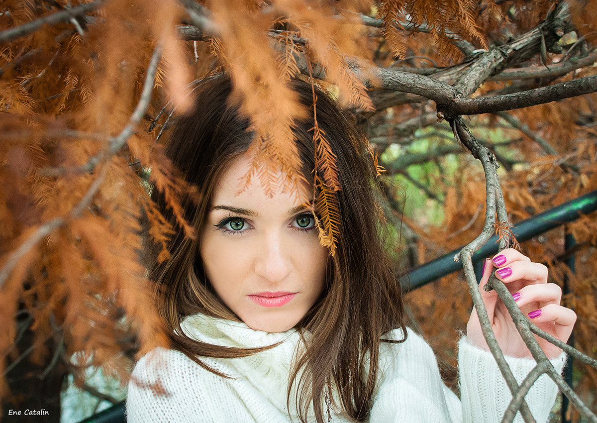 Photograph Queen of autumn by Ene Catalin on 500px
