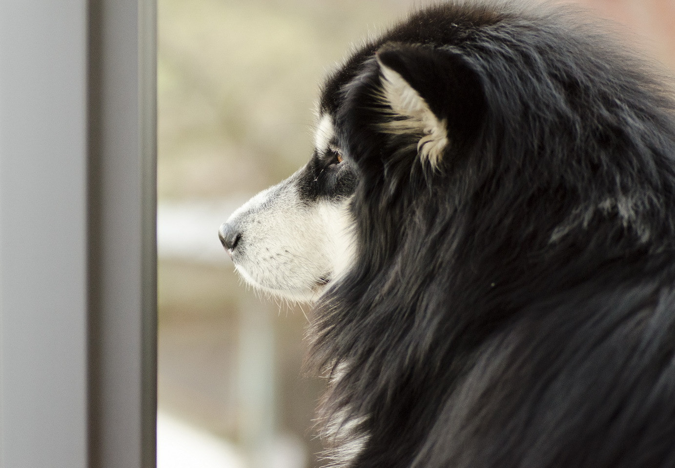 Photograph Hope that she's comming soon.  by Mariusz Milewski on 500px