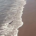 Water flowing in on the beach in Malibu.