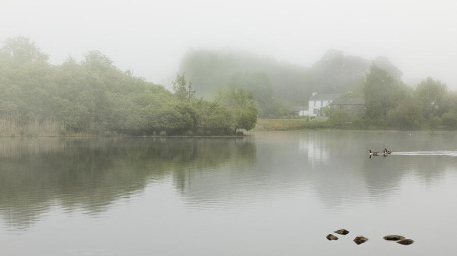 Misty morning, Strandshag Bay