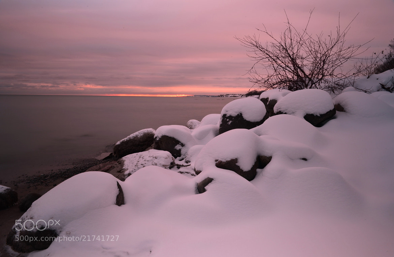 Photograph White Sonata by AZ Imaging on 500px
