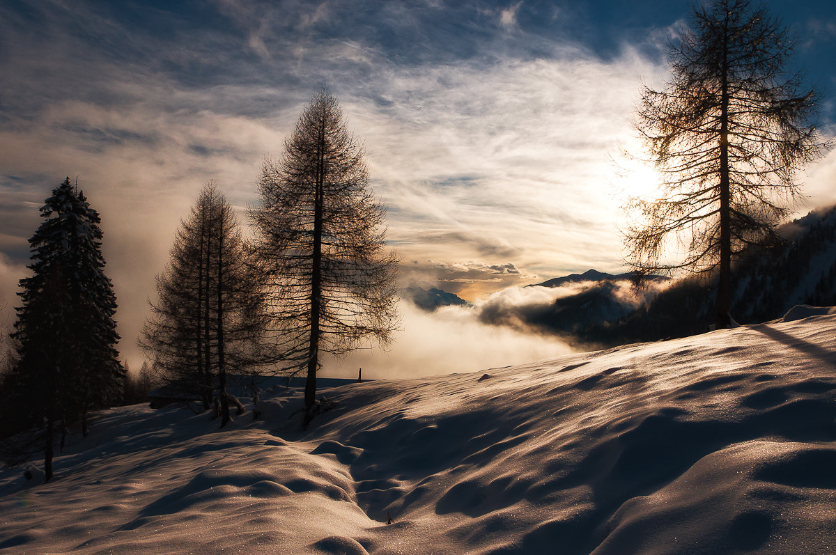 Photograph On the snow by Alessio Pellegrini on 500px