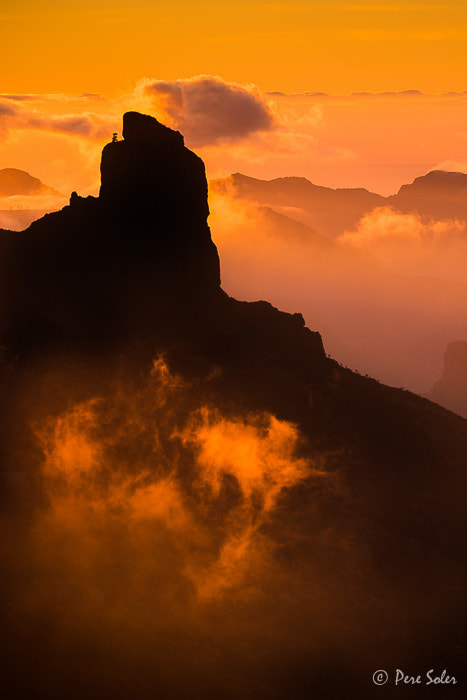 Photograph Golden Visions by Pere Soler on 500px
