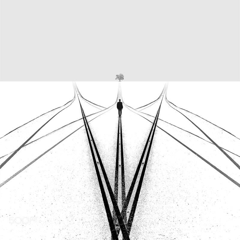 Photograph True choice by Hossein Zare on 500px