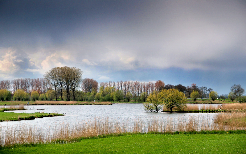 Photograph Spring by Nico van Gelder on 500px