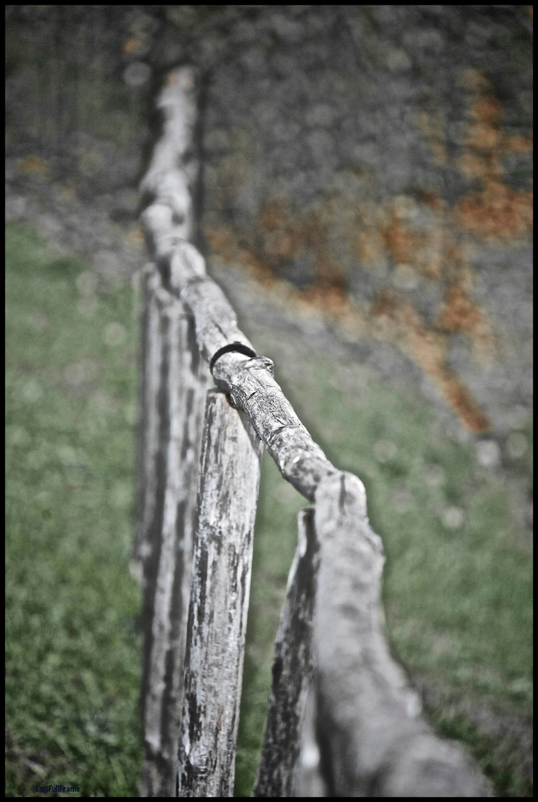 Photograph the Fence by Lorenzo ROSIGNOLI on 500px