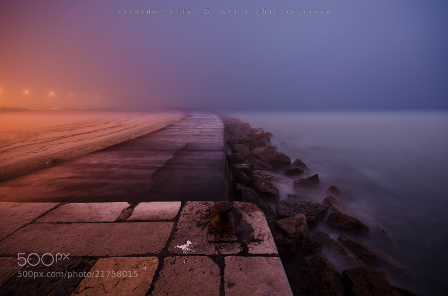 Photograph A foggy morning #4 by Ricardo Bahuto Felix on 500px