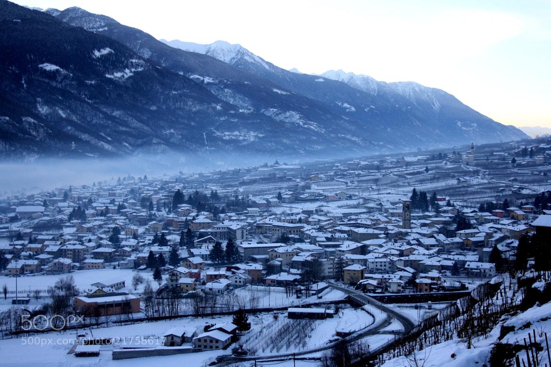 Photograph Winter by Daniela Balgera on 500px
