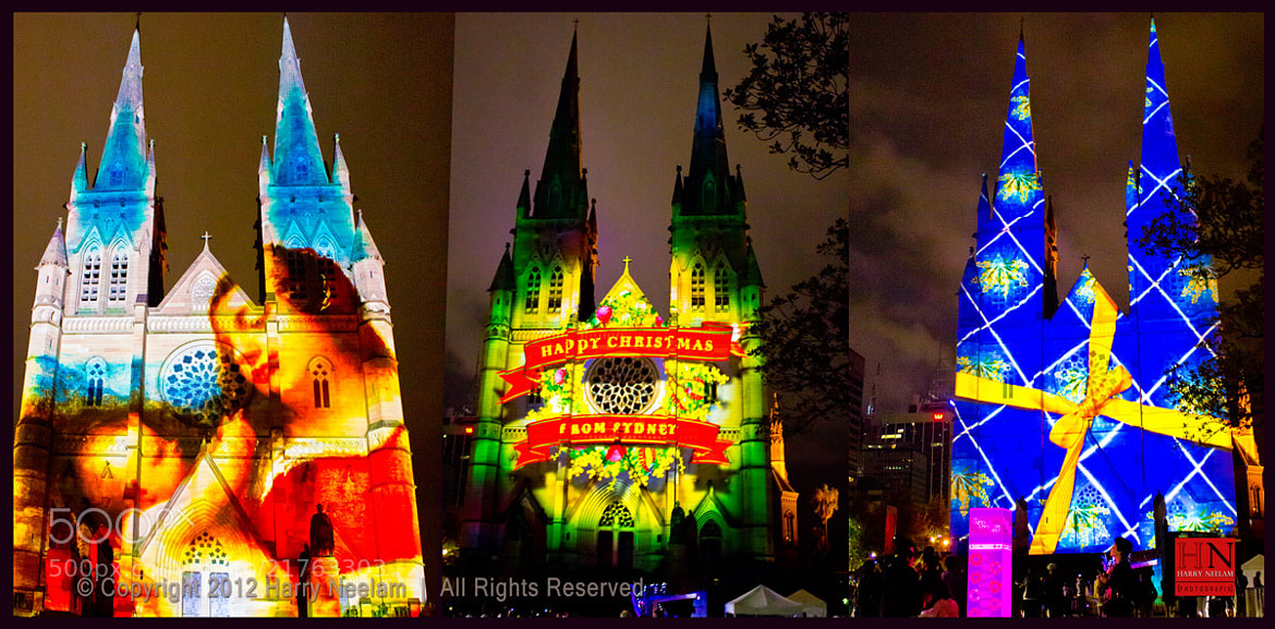 Photograph Christmas Lights @ St. Mary's Cathedral - Sydney, Australia by Harry Neelam on 500px