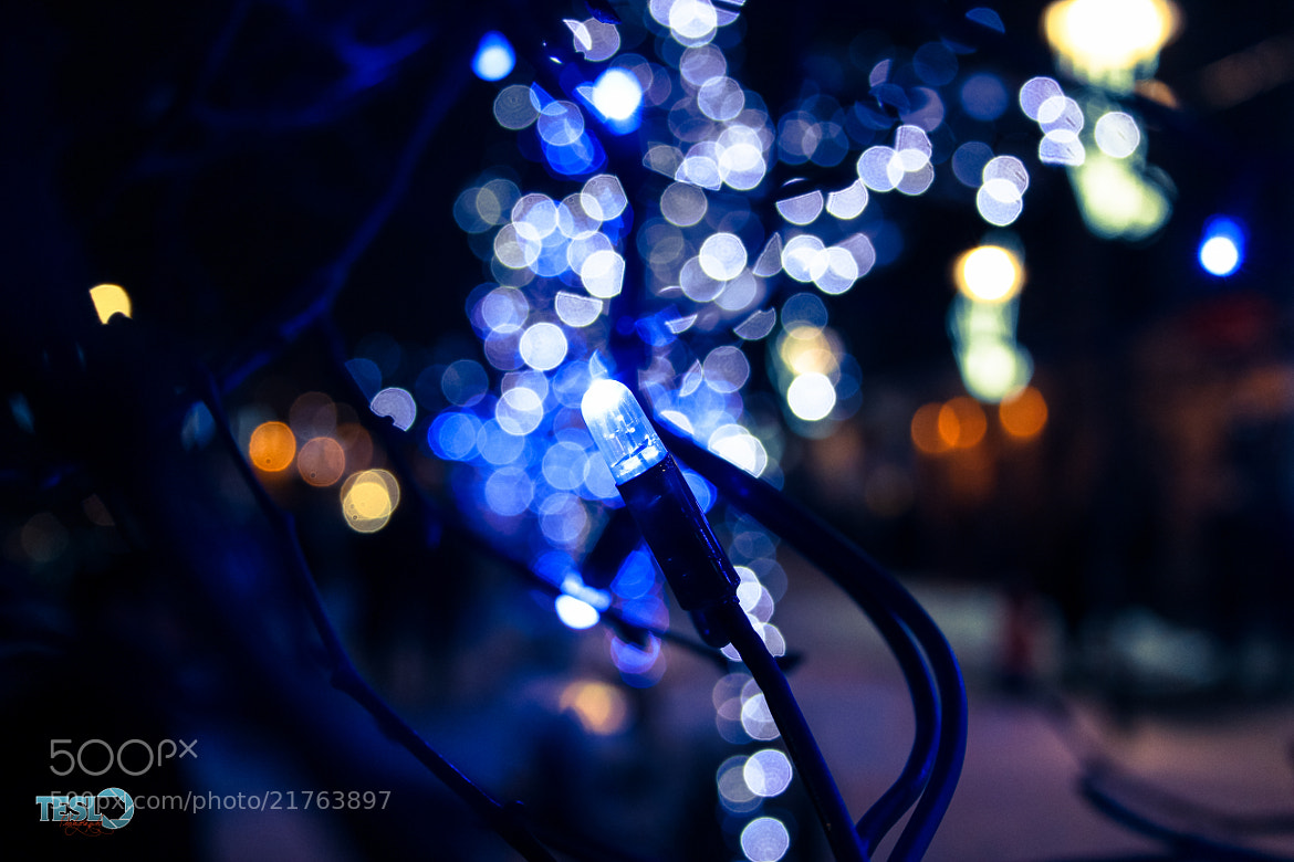 Photograph The heart of a Christmas tree by Cosmin Teslovan on 500px