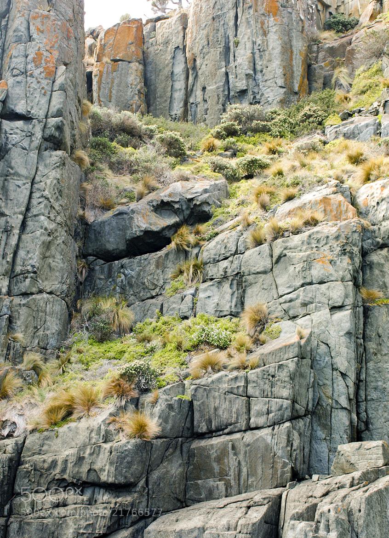 Photograph Tasman Island Rocks by Rodrigo Feistauer on 500px