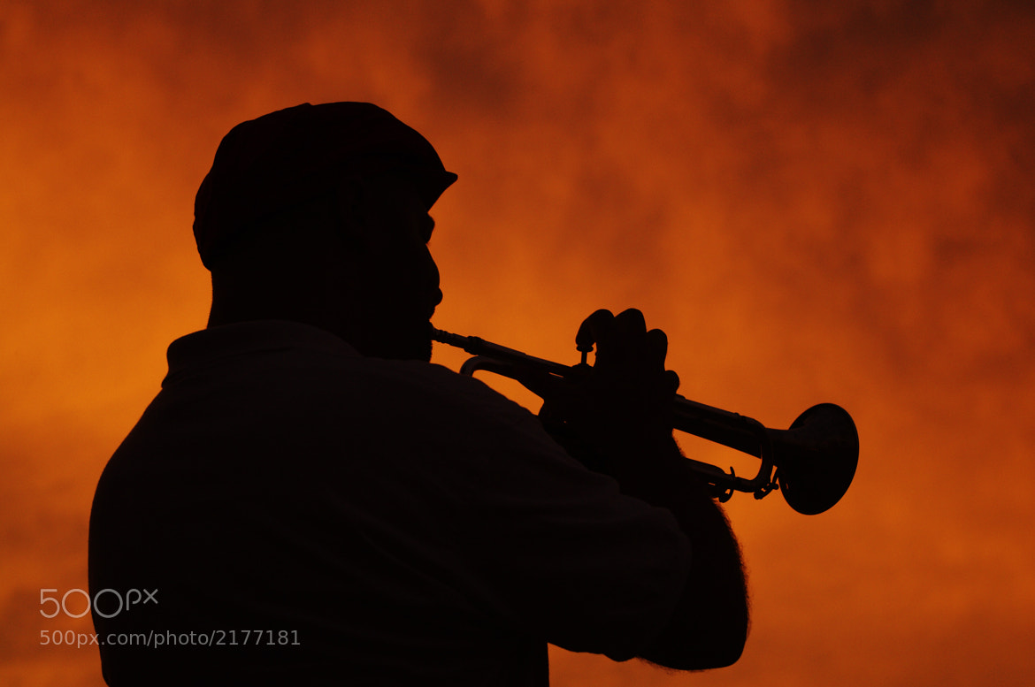 Photograph The Trumpet Player by Jay B. Wilson on 500px