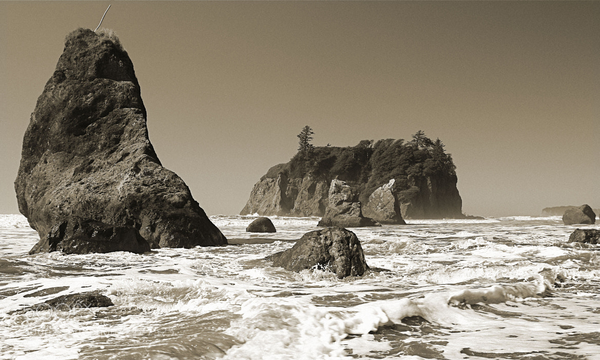 Photograph A Part of the Washington Coast by Lance McCoy on 500px