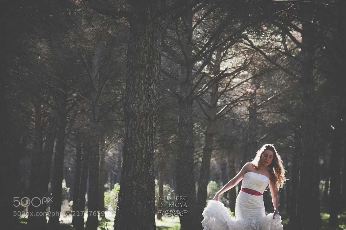 Photograph Cute bride in the forest. by Alejandro de Moya on 500px