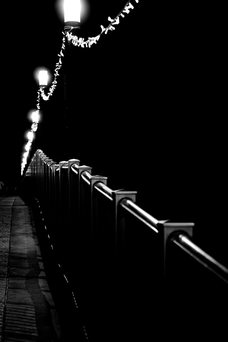 Photograph Bridge by Alessandro D'Alessandro on 500px
