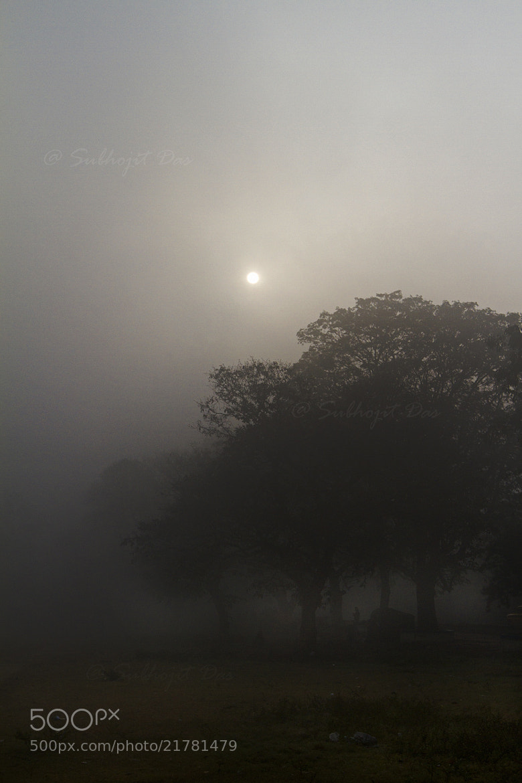 Photograph Foggy affair... by Subhojit Das on 500px