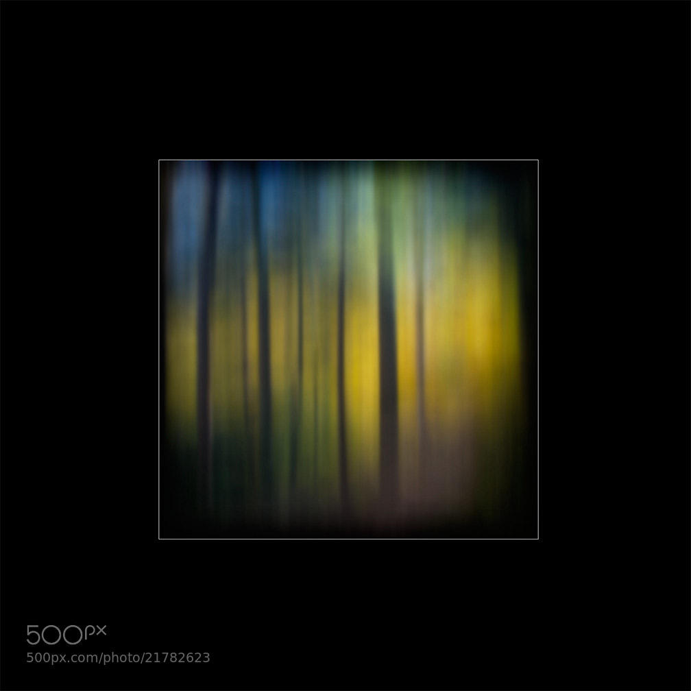 Photograph Trail Blur by Paul Bartell on 500px
