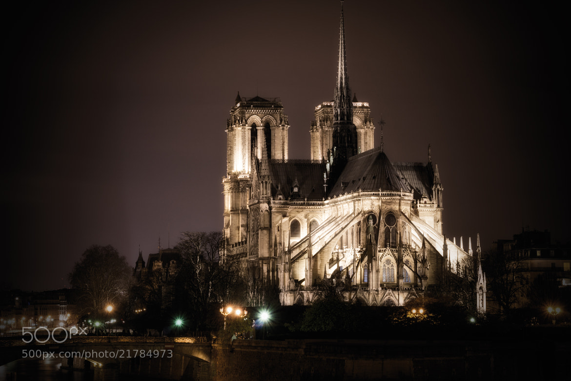 Photograph Notre Dame by Night by Andrea Gusperti on 500px
