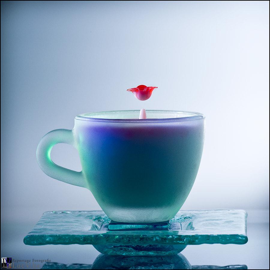 Red milk #5