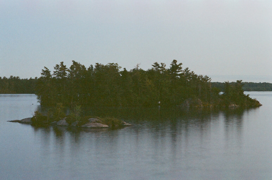 On an overcast day rests a small, somber island covered in trees. The trees bleed into their reflections in the water.