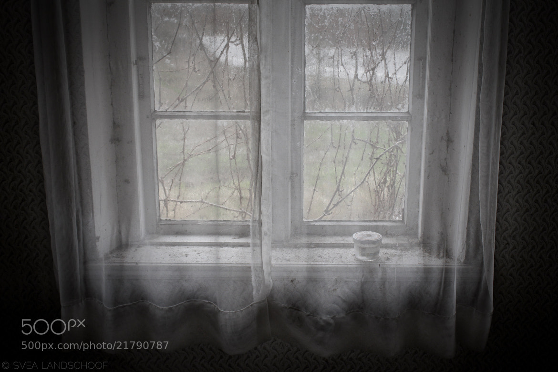 Photograph Window by Svea-Malina Landschoof on 500px