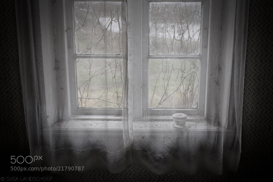 Photograph Window by Svea-Malina Landschoof on 500px