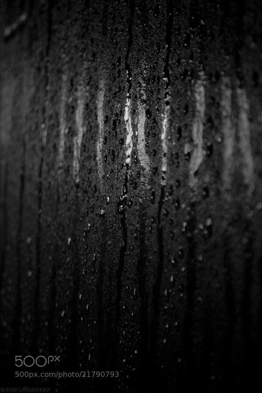 Photograph Humidity by Svea-Malina Landschoof on 500px