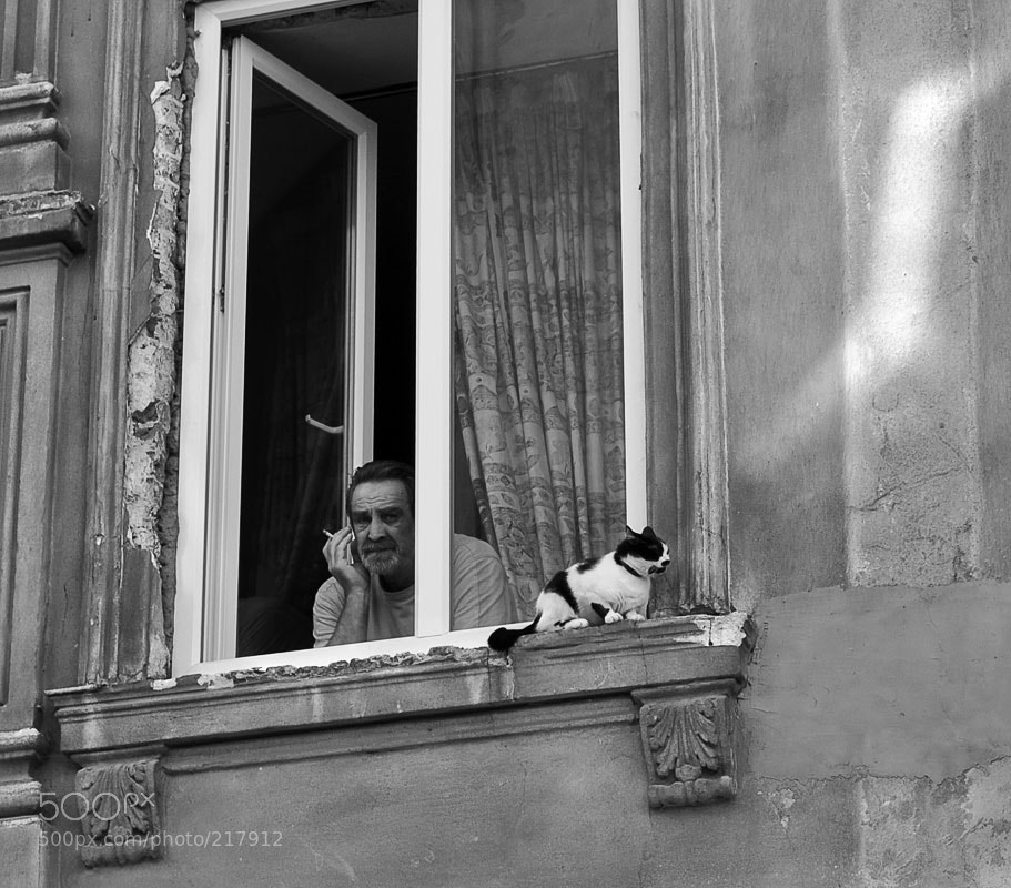 Photograph man'n'cat by ash ... on 500px