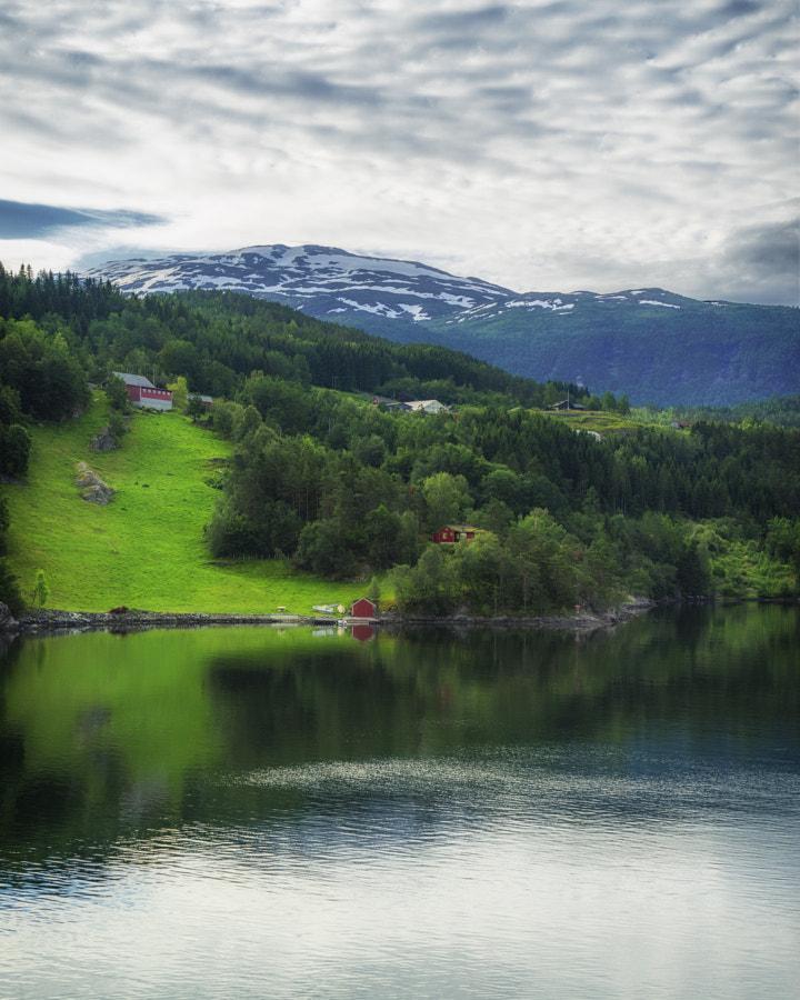 Ulvic, Norway II