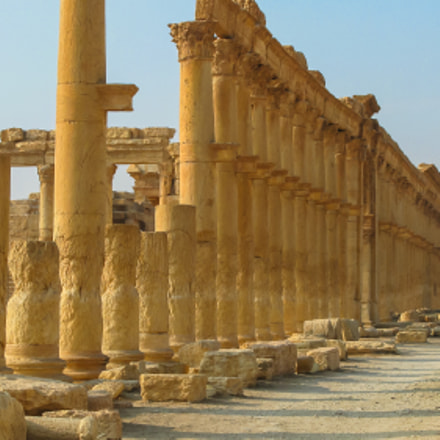 Panorama of Palmyra columns Tetrapylon ancient city, destroyed ISIS Syria